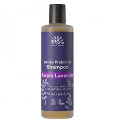 Shampoing bio Lavande purple 250ml - Urtekram